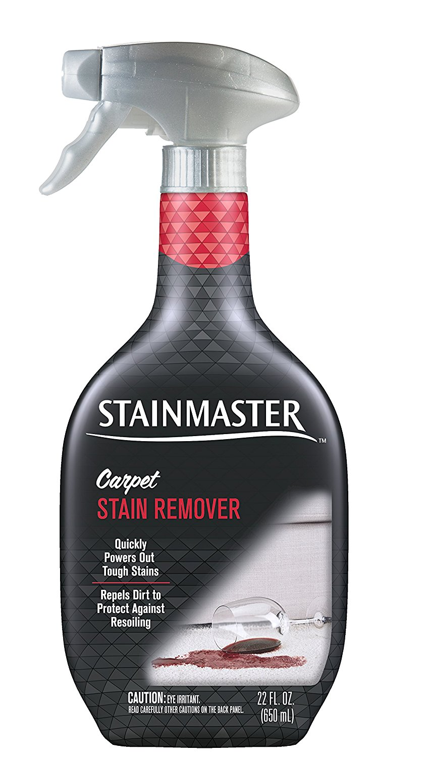 STAINMASTER Carpet Stain Remover Cleaner, 22 Ounce