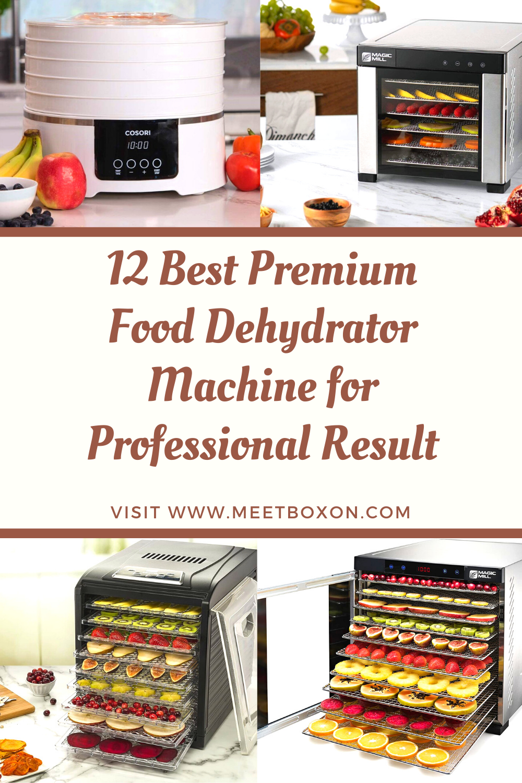 12 Best Premium Food Dehydrator Machine for Professional Result