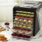 Gourmia GFD1950 Premium 9 Drying Trays Electric Food Dehydrator Machine